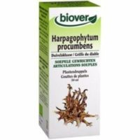 Teinture mère Harpagophytum bio (50 ml) - Biover